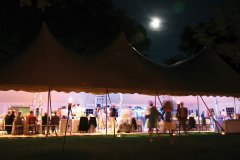 wedding-tent-image-large.jpg